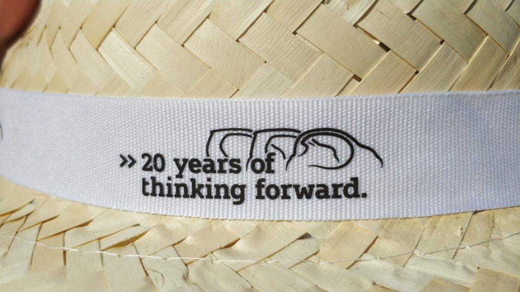 Gorro 20 aniversario de Smart